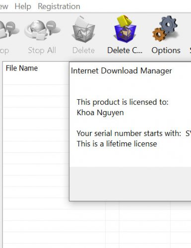 Internet Download Manager (IDM) - Trọn đời photo review